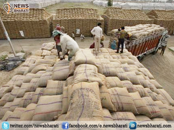 More 25,000 MT pulses seized from hoarders across country, 16,000 MT alone seized from Maharashtra