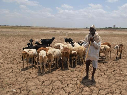 Government allocates Rs. 410 crores to drought affected areas to improve ground water recharge