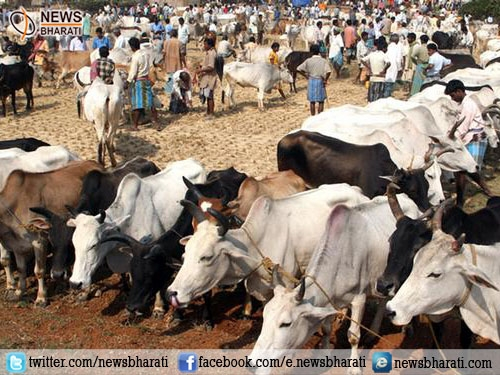 After Kerala, now Meghalaya Assembly passes resolution against 'Beef-ban'