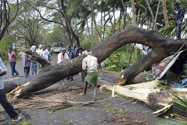 Lightning strike due to heavy rains killed 23 in Andhra Pradesh and 9 in Odisha