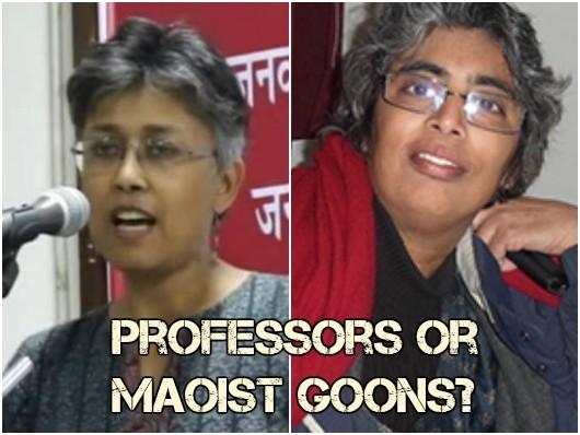 DU professor Nandini Sundar booked for tribal man's murder in Chhattisgarh: Academicians or Maoist goons?
