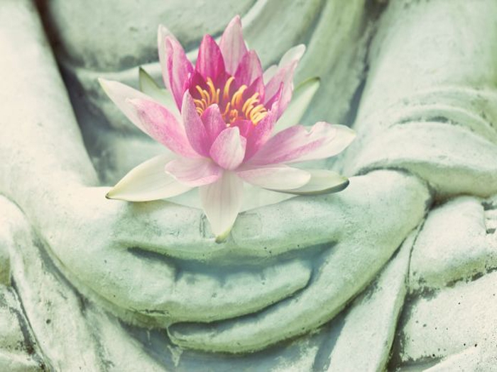 Ashtamangala – The eight auspicious symbols of Tibetan Buddhist Tradition-II