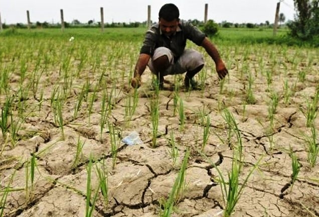 Centre working expeditiously to provide loans to Farmers in a timely manner says Agricultural Minister