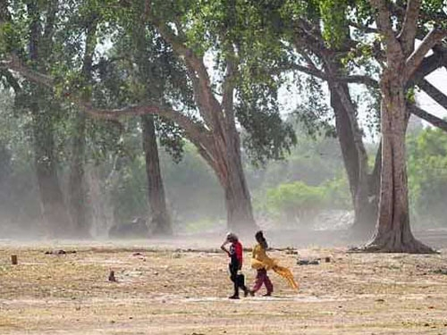 IMD issues 'Red Alert' for severe heat wave; warning raised for next 5 days