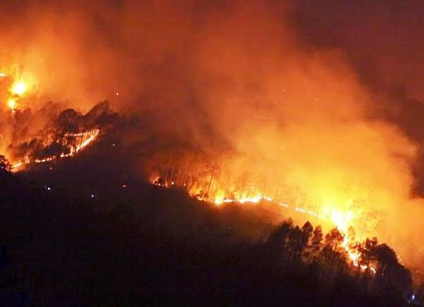 Three NDRF teams comprising 135 personnel deployed to control fire in forests of Uttarakhand