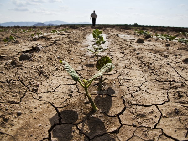 Cabinet Secretary calls for integrated action plan to tackle drought situations in the nation
