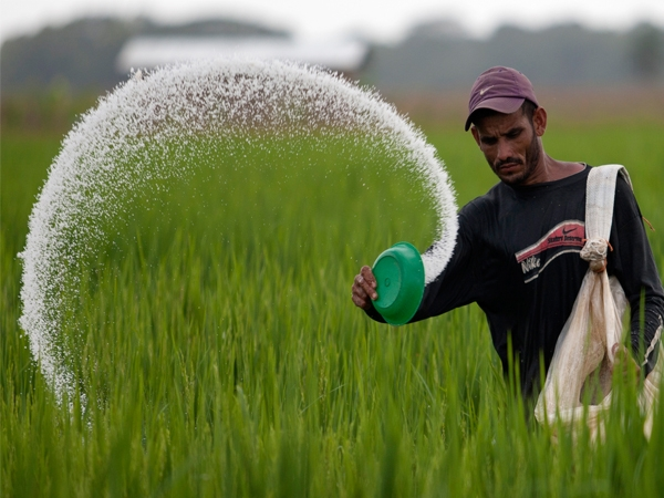 Good News! Chemical fertilizers consumption dropped by 8 to 10% in country