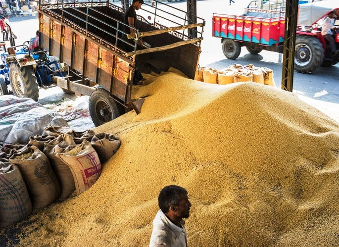 Cabinet approves 'Minimum Support Prices' for Kharif crops; prices to be effective from October 1