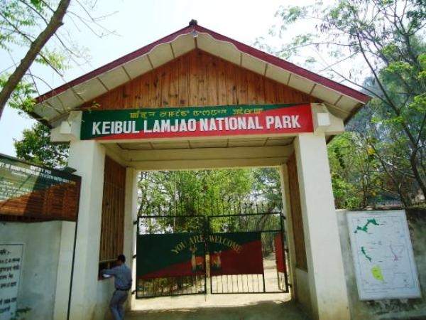Manipur to give a prominent push for making Keibul Lamjao National Park a world heritage site