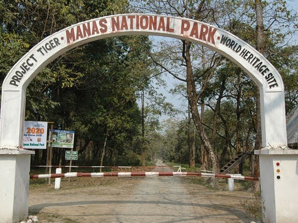 Heritage Manas National Park gets approval for addition of 350 sq km for benefit of wildlife