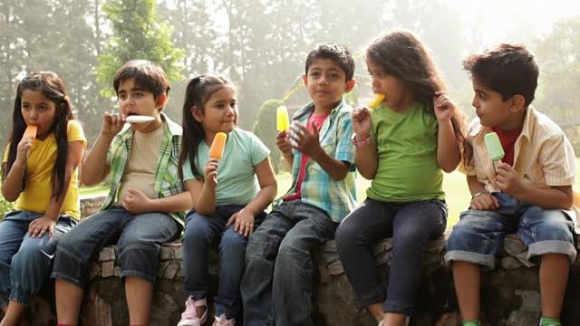 CSIR develops 'Nutrice cream' to benefit brain development in children and elderly people