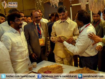 India Rice Conclave 2017 kicked off; Andhra Pradesh aims to strengthen 'rice production'