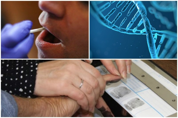 Andhra Pradesh plans to use DNA database technology to track criminals, rapists