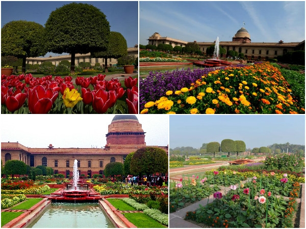 President inaugerates 'Udyanotsav'; Gardens of Rashtrapati Bhavan are open for public