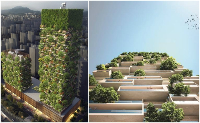 Asia's first vertical forest being built in China which will produce 60 Kg of Oxygen everyday