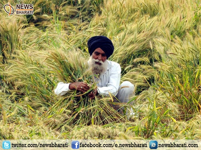 Acche Din for farmers as India now set to reap record Rabi crops after Kharif