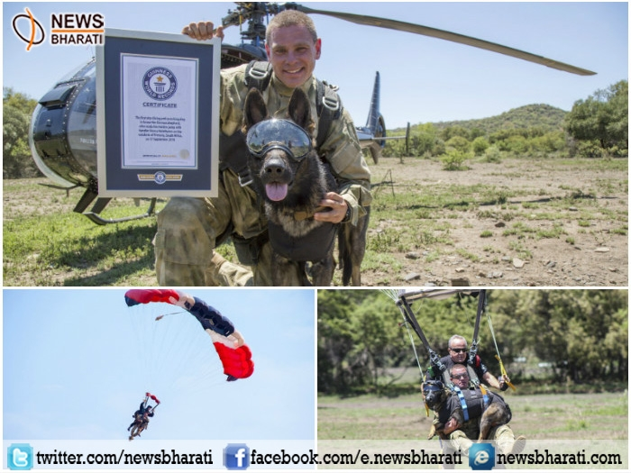 ARROW, an incredible dog who does skydiving and saves endangered wildlife; bags Guinness World Record