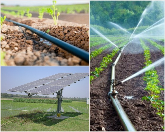 Maharashtra agriculture to get boosted with 'micro-irrigation' and 'solar-feeders'