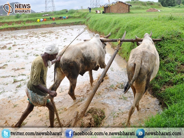 Major relief for Jharkhand farmers, to receive loan against 1% interest