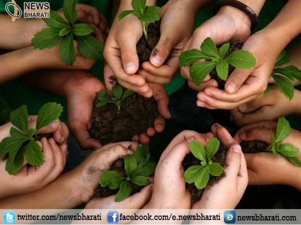 By participating in plantation drives become 'Green Ambassadors'