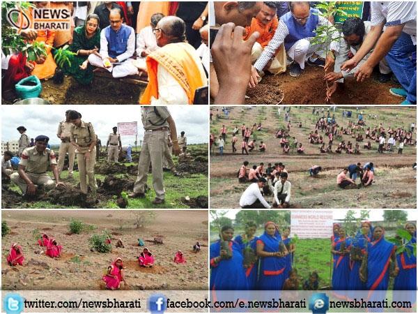 #MPPlants6CroreTrees : Grand Plantation Campaign leads Madhya Pradesh to go green