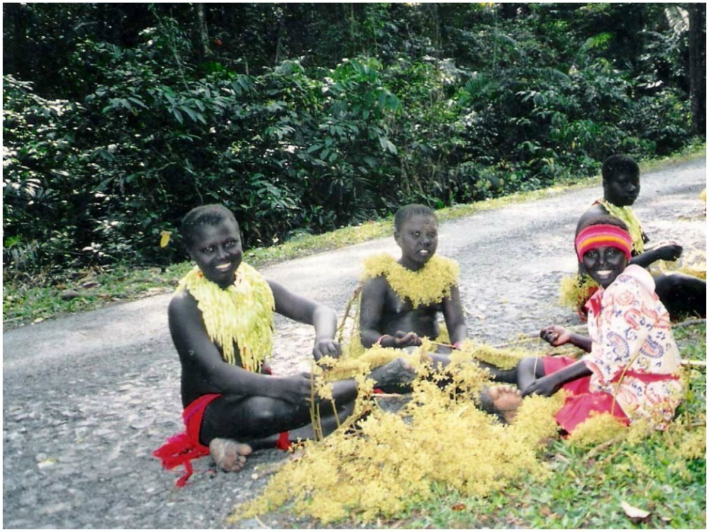 Andaman to take strict action on video, photos of Jarawa community uploaded on YouTube