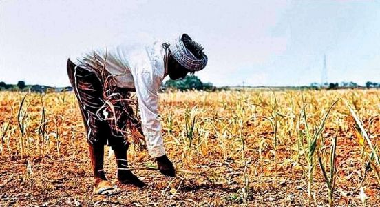 Farmers' distress manufactured for political gains?