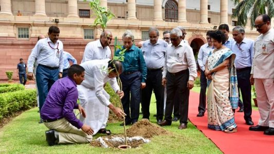 'Tree plantation & water conservation should become people's movement', VP Naidu calls for fulfilling of social responsibility