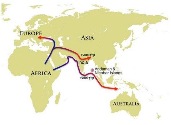 Migration_1H