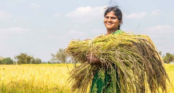 #FarmBills: Liberated farmers, confused Opposition