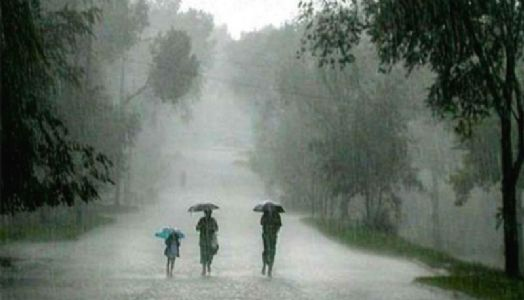 Meteorological Department forecasts normal monsoon
