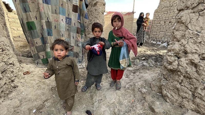 afghan_1H x W